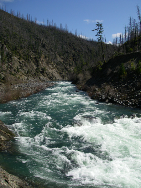 clear_creek_rapid