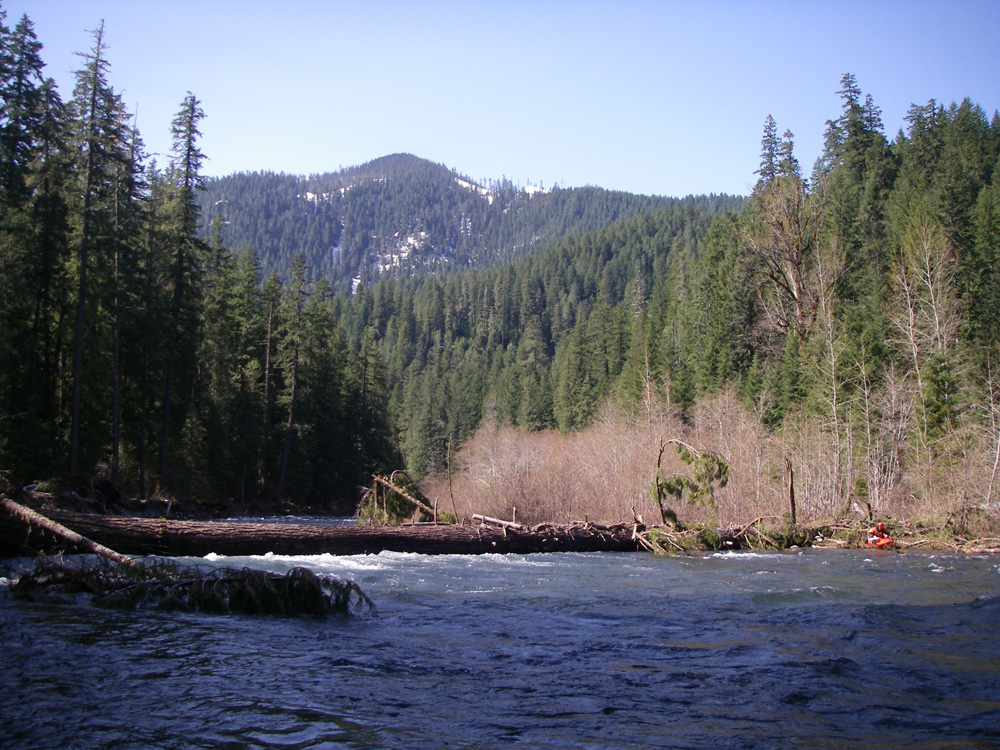 north_santiam_log_big